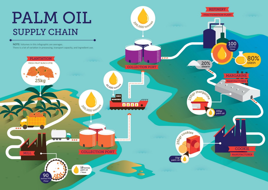 Certification Of The Palm Oil Supply Chain