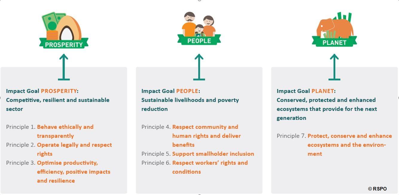 Zertifizierungsstandards für nachhaltiges Palmöl
