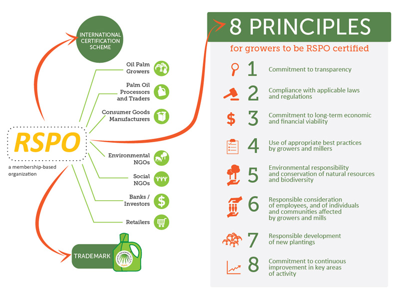 The Following Eight Principles Must Be Observed By RSPO Members