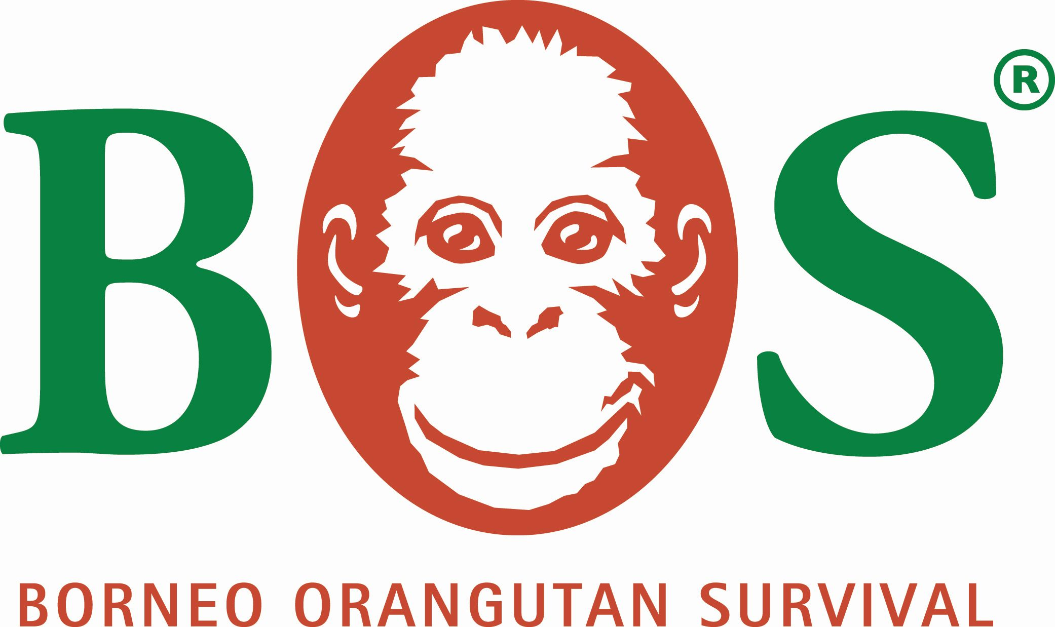 Introducing the members of the Forum for Sustainable Palm Oil